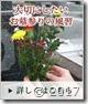 banner_150309_02