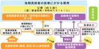 Fig_kouki_k